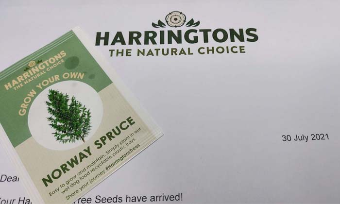Free Stuff Proof - Norway Spruce Seeds Arrived