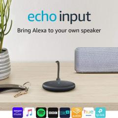 £15 off Echo Input (Black)
