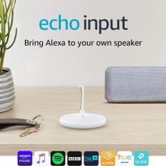 £15 off Echo Input White