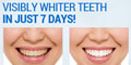 Risk-Free TRial of Total White Teeth Whitening Kit