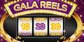 Gala Slots 10 Free Spins