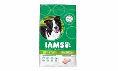Free IAMS Proactive Dog Food