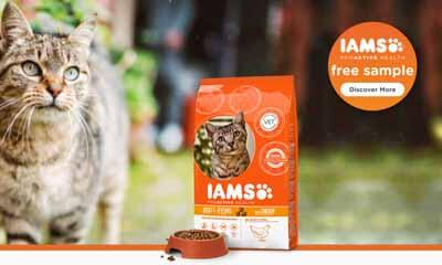 Free IAMS ProActive Health Sample Box for Your Cat
