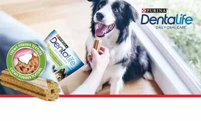 Free Purina Dentalife Dog Chews