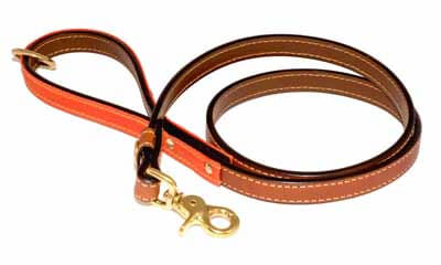 Free Leather Dog lead