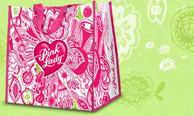 Free Pink Lady Shopping Bags