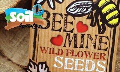 Free Wildflower Seeds from The Soil Association