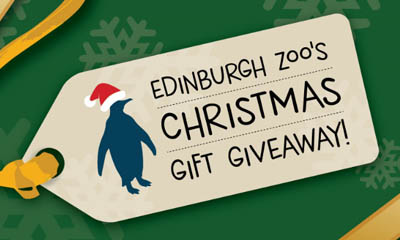 Win a Prize Bundle with Edinburgh Zoo
