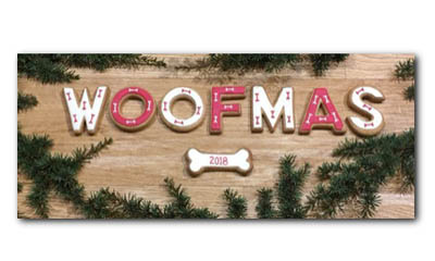 Win Christmas treats for your Dog
