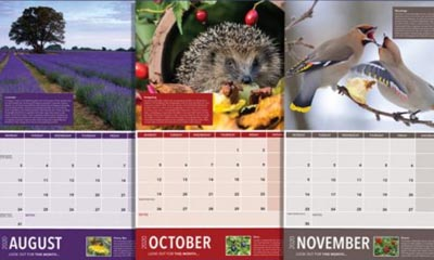 Free BBC Autumn Watch Wildlife Calendar