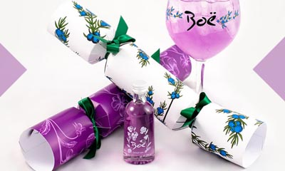 Free Boe Gin Christmas Crackers