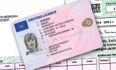 Free Driver Licence Online Check