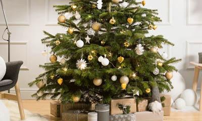 Free Christmas Trees at Ikea
