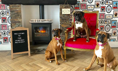Win a Weekend Stay for your Pooch