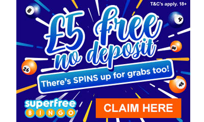 £5 Free Bingo To Play Now!