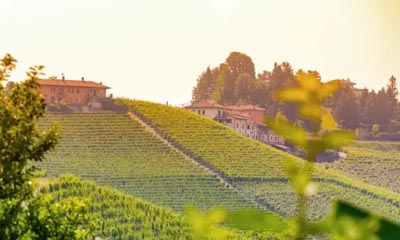 Win a two-night holiday to an italian Wine Region