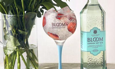 Win Bloom Gin and Glasses
