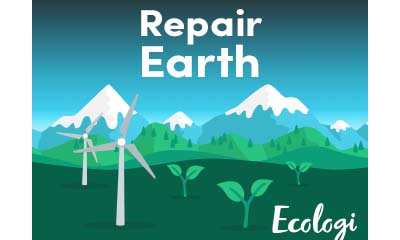 Register with Ecologi & Plant more trees